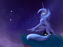 Luna at night by Lanternae