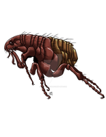 Paralytic Flea by ProdigyDuck