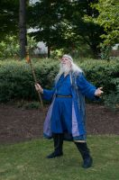 2014-08-31 Wizard in Park 02 by skydancer-stock