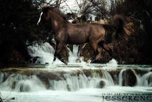 Jesserene by adverbial-spectra