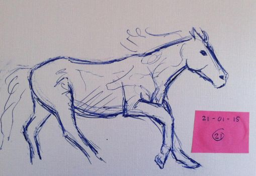 #21 Drawing a horse a day 2015 by Nienke15
