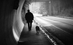 Dog and master in a tunnel by April-Mo