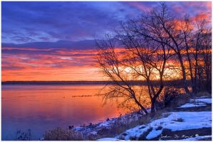 Warmth Of A Winter's Morning by kkart