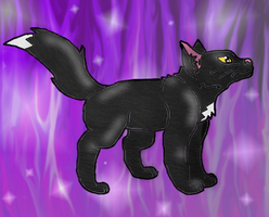 Ravenpaw! by SuperSonicFireDragon