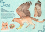 Jaze Young Gryphon Reference by Edisto