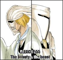 BLEACH 555. The beauty and the beast by SKurasa