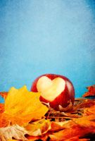 autumn hearts by cande-knd