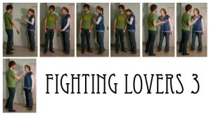 fighting lovers 3 by syccas-stock