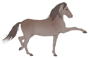 Andalusian Auction Horse 7 by HoofHaven