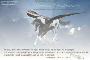 Mysterious Disappearance by JuneButterfly-stock