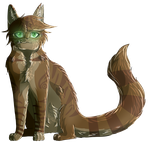 Crookedstar by Leafbugs