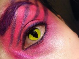 Cheshire Cat MakeUp by musicfan4
