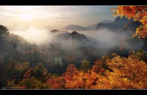 Fall Ray Valley by 00AngelicDevil00