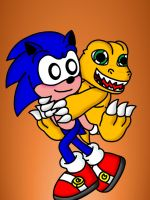 Sonic and Agumon by LotDarkos