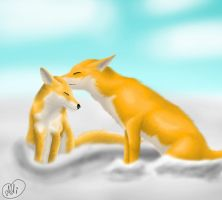 Love Foxes by Did2009
