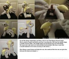 Derpy Hoove Plush Finished! With Accessories! by RaptorArts
