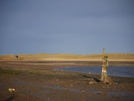 Ythan - low tide by Blue-eyed-Kelpie