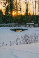 Winter Crosswood by Photopathica