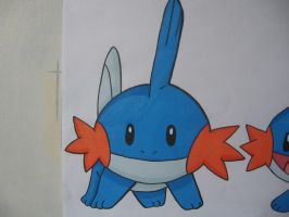 Mudkip V3.2 - Colour by sazmullium
