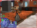 Sims 2 Pets/Season Penguin in the Kitchen! by Anime210freak