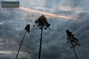 Clouds long expo 3 by OrisTheDog