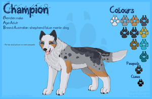 Champion Reference Commission by KendaWolf