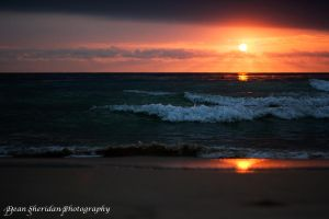 Coogee Sunrise by DEAN1S