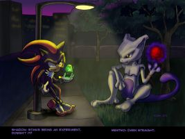 Shadow and Mewtwo by NetRaptor