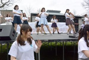2015 Japanese Festival, Cultural Group Boogie 14 by Miss-Tbones