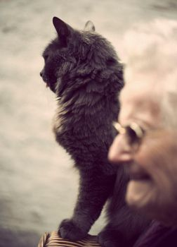 the cat and grand mother by Mcdbrd