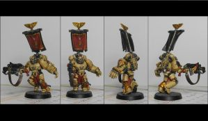 Sergeant Space Marines - Finish by TheWayOfTempest