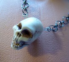 Human Skull Necklace by Divulged