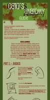 Anatomy Guide - Part 1 by Penumbra-Ex