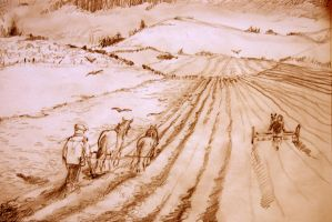 We plough the fields and scatter 2 by mr-macd