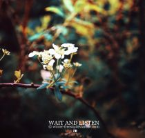 Wait and Listen by Winter-Freesia