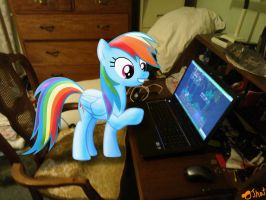 Rainbow Dash plays the Daring Do game. by OJhat