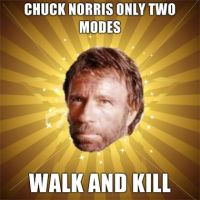 Chuck Norris Beat Down by nicksnack