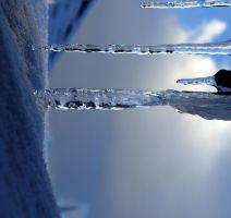 Icicles by gee231205