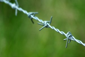 Barbed by syrus