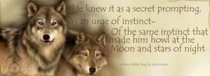 White Fang quote by Missmoonbunny