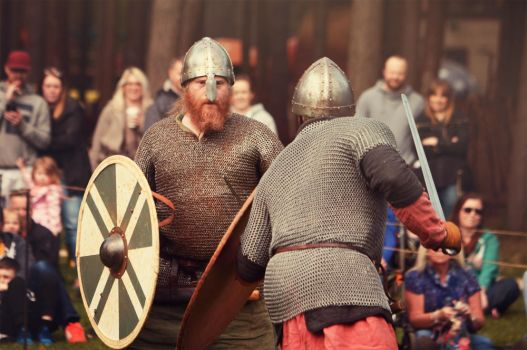 Vikings vs Mercia warriors by Merlin222