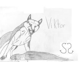 Viktor by Zs99