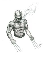 Wolvie sketch before bed by peetietang