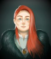 Queen in the North by agnesyo