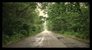 Country roads...take me home by dianora