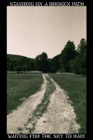 standing on a broken path. by RighteousPigPile