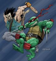 raph/casey color by mastaczajnik