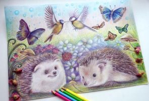 Hedgehogs (WIP) by Alena-Koshkar