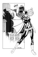 Batgirl on the Gotham Rooftops by BDStevens