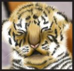 Cute Tiger Cub Painting by Jezzy-Fezzy